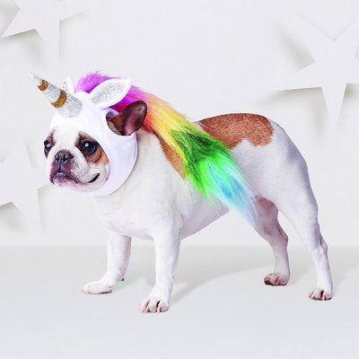 Unicorn Headwear Costume for Dog - White - Hyde and Eek! Boutique