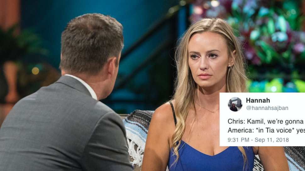Tweets About Annaliese & Kamil's 'Bachelor In Paradise' Breakup