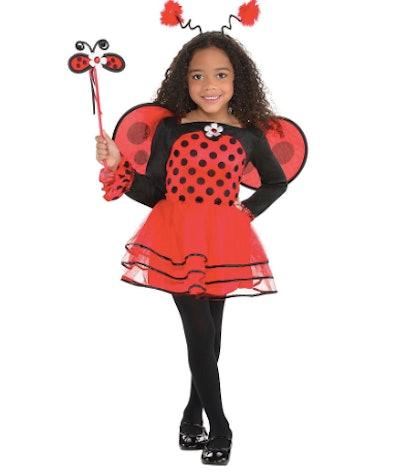 Ballerina Ladybug Costume