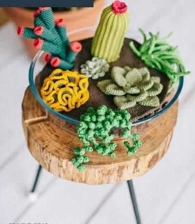 Crochet Succulent And Cactus/Amigurumi eBook