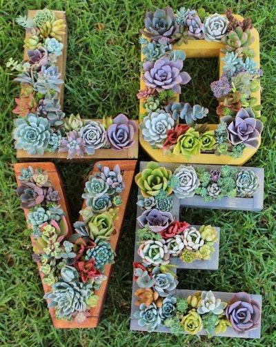 Planted Succulent Monogram Letters