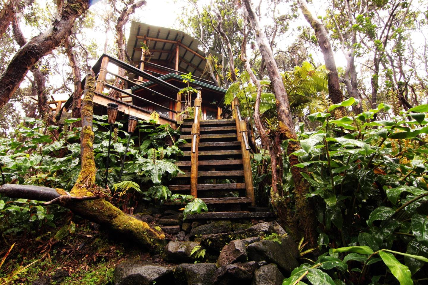 10 Amazing Treehouse Als You Can Find On Airbnb From Montana To Bali