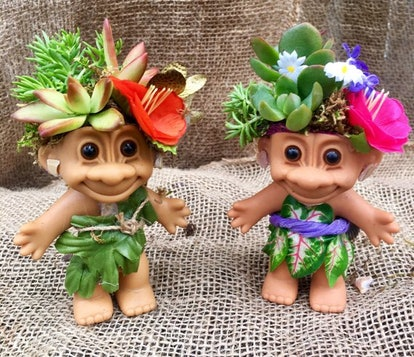 '90s kids, get ready to freak out. Did you know you can buy a succulent that's been potted in the head of a troll doll? I know it sounds too good to be true, but Hlarsondesigns on Etsy turned this dream into a reality.
