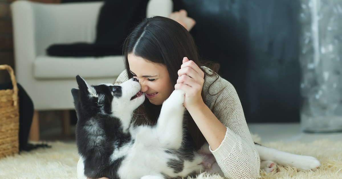 8 Totally Shameless Things You Do If You Love Your Pet More Than Your Friends