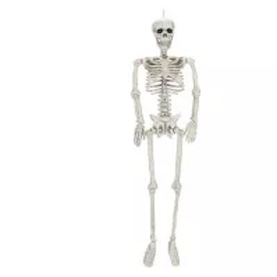 Medium Halloween Posable Skeleton - Hyde and Eek! Boutique