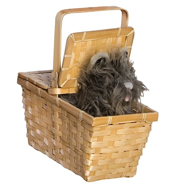 67a18e14cebc GABOSS Lion Mane Costume, $11.99, Amazon; Rubie's Costume Women's Wizard Of  Oz Adult Dorothy Dress and Hair Bows, $39.99, Amazon; Toto with Basket,  $14.59, ...