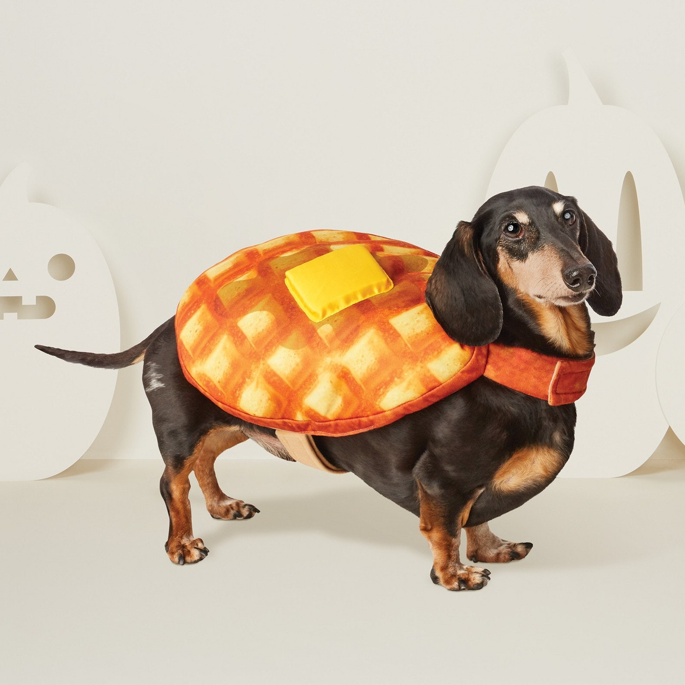 15 matching dog & owner halloween 2018 costumes that are just