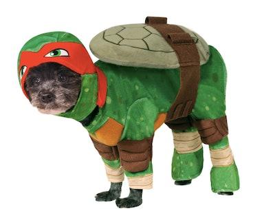 Teenage Mutant Ninja Turtles Raphael Dog Costume