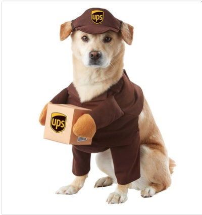 UPS Pay Dog Costume