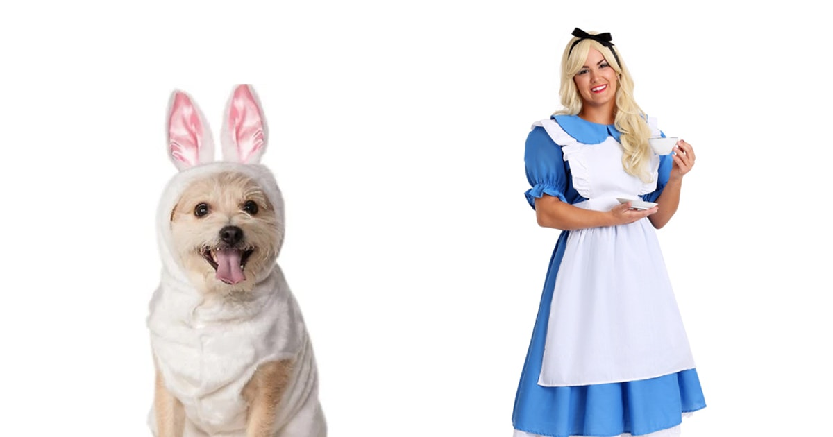 95180cff142 15 Matching Dog & Owner Halloween 2018 Costumes That Are Just ...