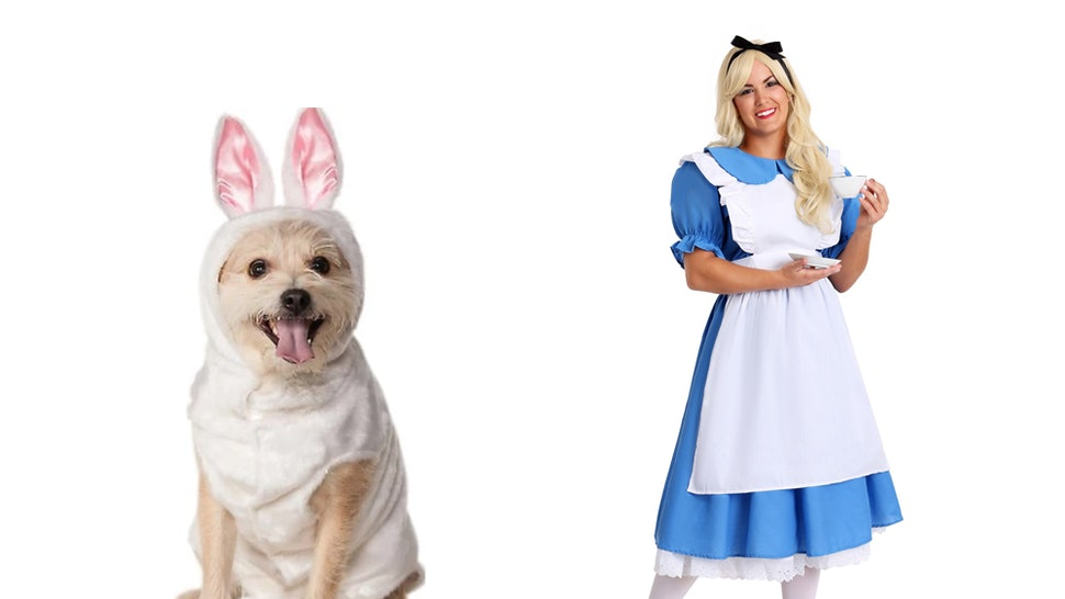 8ed0afd42c39 15 Matching Dog   Owner Halloween 2018 Costumes That Are Just Freakin   Adorable