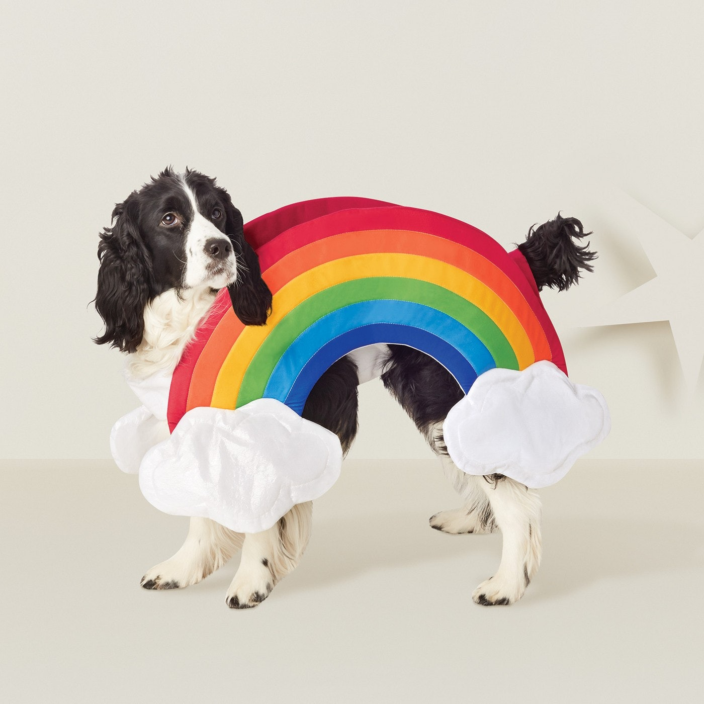 15 Matching Dog & Owner Halloween 2018 Costumes That Are Just ...