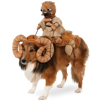 Bantha with Tusken Raider Pet Costume