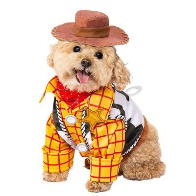 Woody Pet Costume