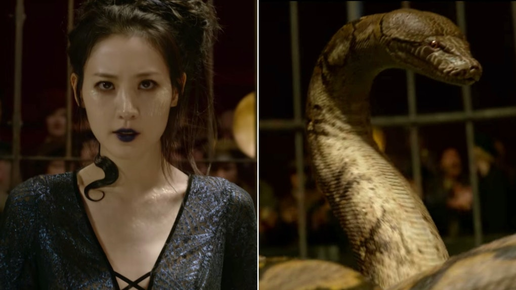 What Is A Maledictus? J K  Rowling Explains Nagini's 'Harry