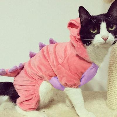 Bro'Bear Pet Plush Dinosaur Costume