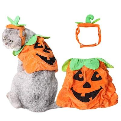 B Bascolor Pumpkin Halloween Costume for Cats