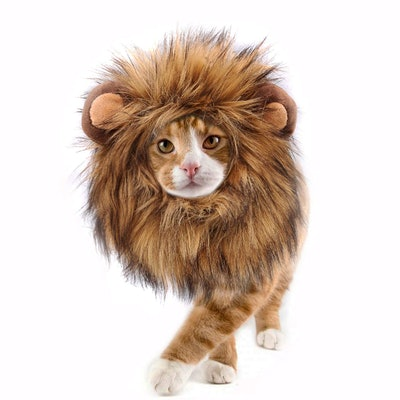 Onmygogo Lion Mane Wig for Cats