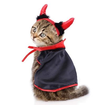Jetec Cat Cape Pet Cloak and Adjustable Horn Headdress