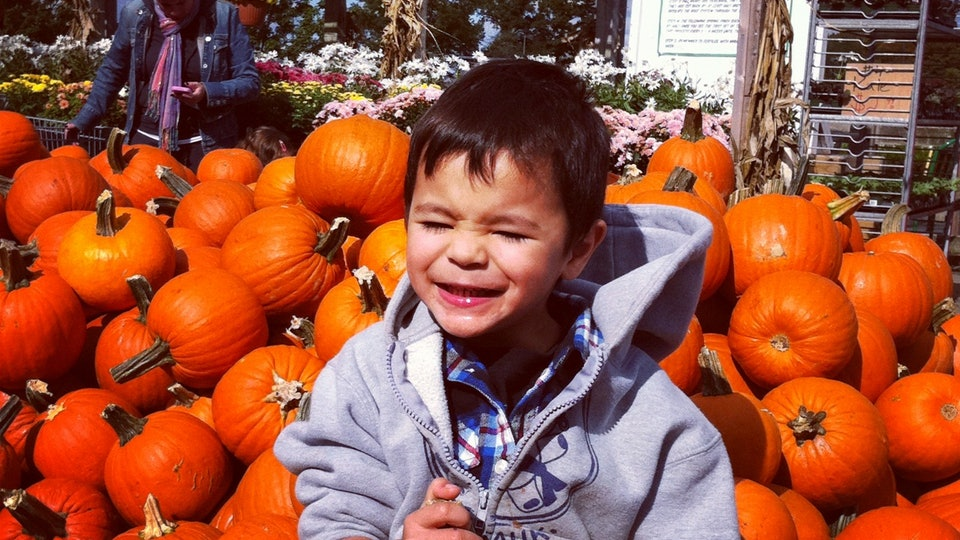 ada5a1611340 6 Fascinating Facts About Autumn Babies That Will Make You Want To ...