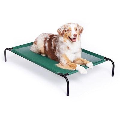 AmazonBasics, Elevated Cooling Dog Bed