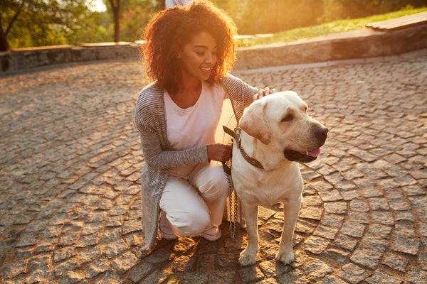 Woman walking her dog in the park at sunset.