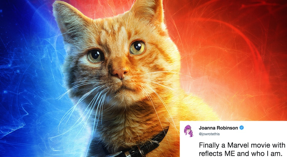 The Captain Marvel Cat In The Movies New Poster Has Twitter