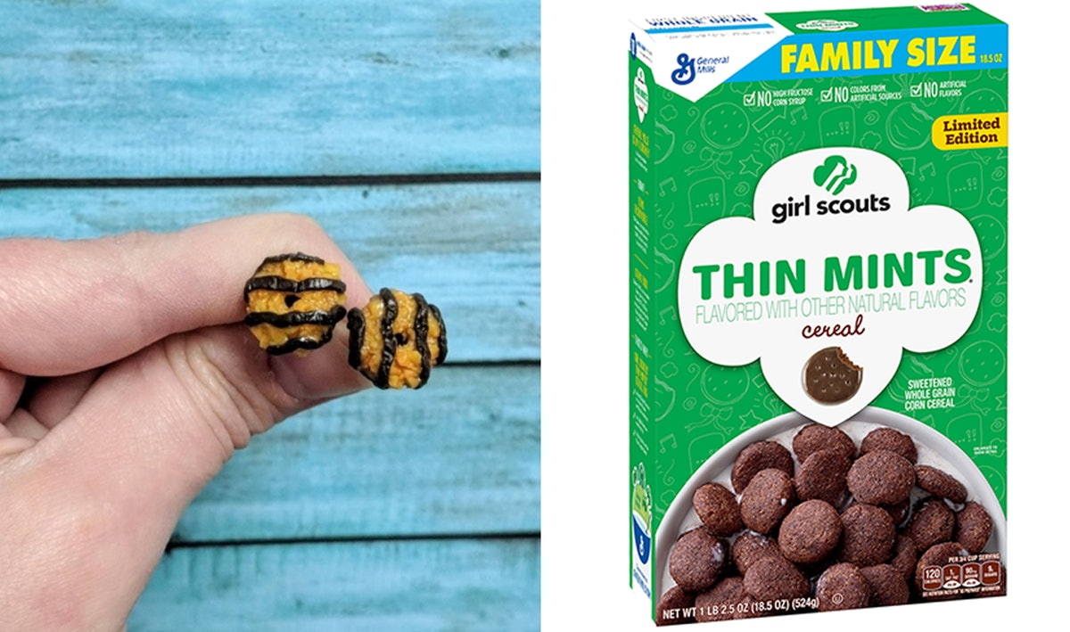 18 Girl Scout Cookie-Inspired Things You Can Buy