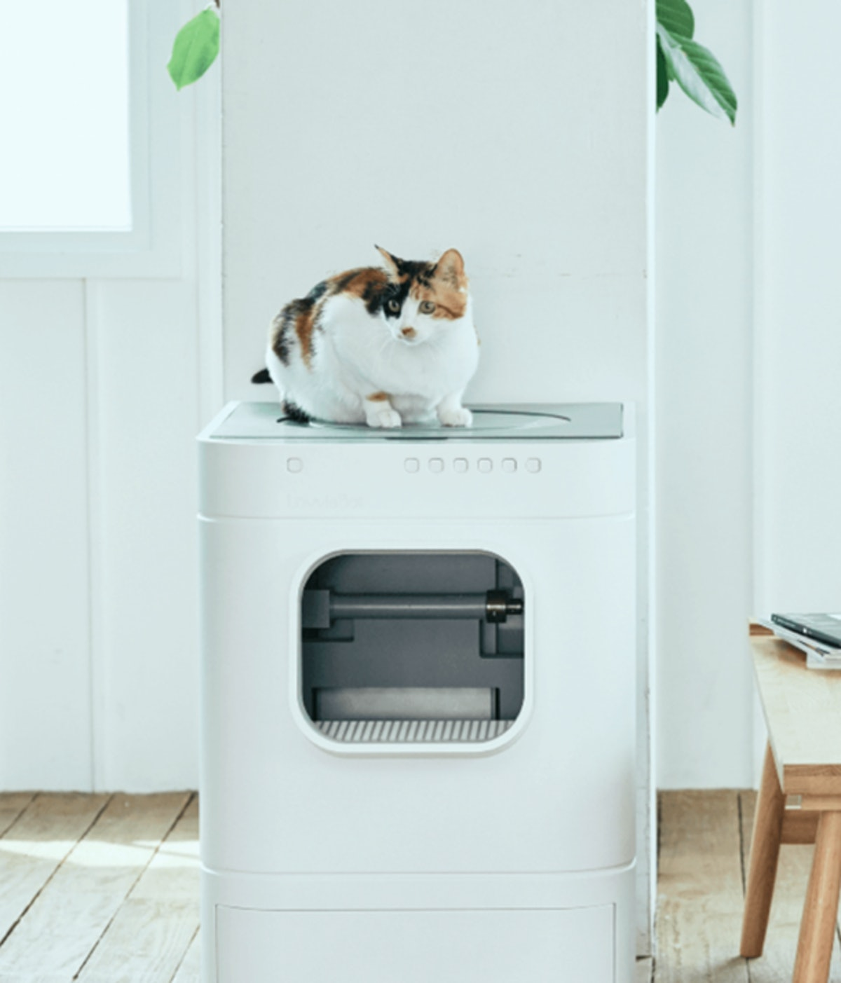 This Self-Cleaning Litter Box Can Do Some Pretty Impressive Tricks, Honestly