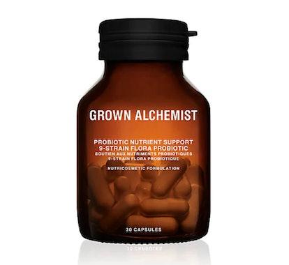 Probiotic Nutrient Absorption