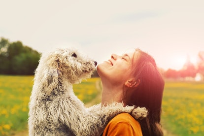 A woman and a dog hug in a sunny field for a picture-perfect moment.