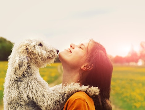 A woman and a dog hug in a field for a picture perfect moment.