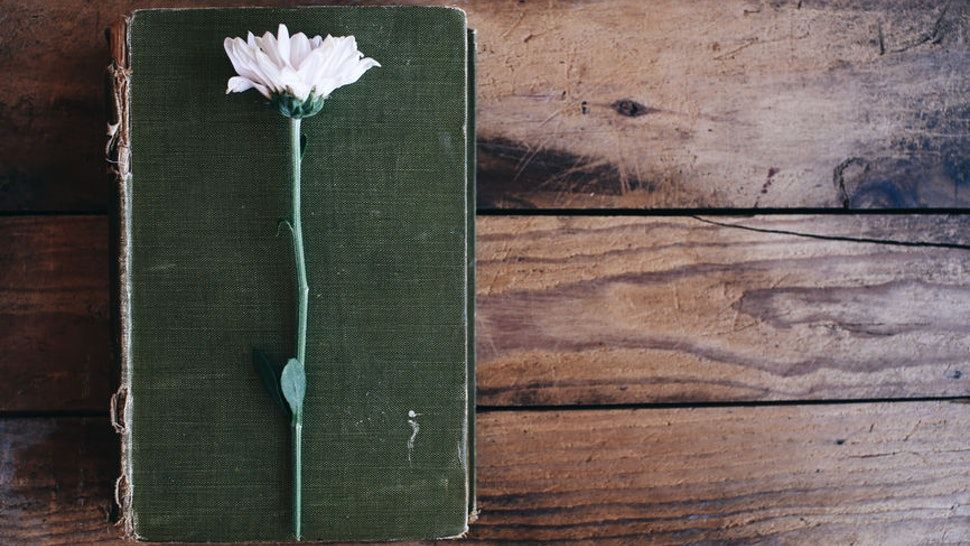 12 Mary Oliver Poems You Will Never Be Able To Forget