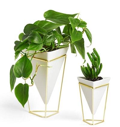 Trigg Desktop Planter Vase & Geometric Container