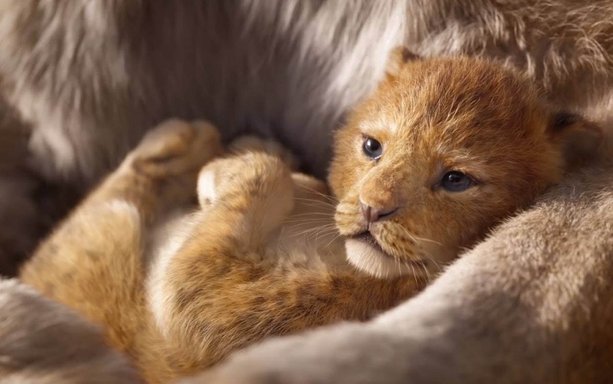 When Is 'The Lion King' Coming Out In The UK? The Disney Remake Is Roaring It's Way To The Big Screen