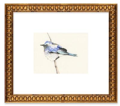 Bluebird by Lee Cline