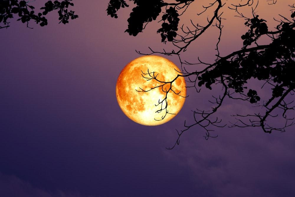 january 8 super moon astrology