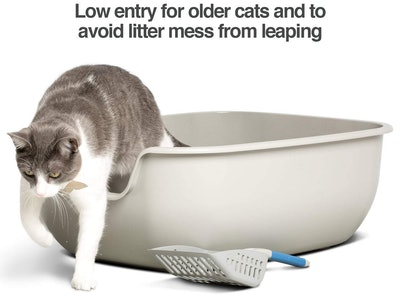 PetFusion Easy Clean Cat Litter Box