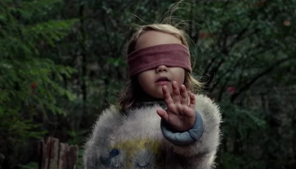 The Bird Box Challenge Is More Offensive Dangerous Than The