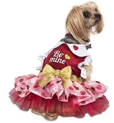 Love My Pup Be Mine Valentine's Day Dog Dress