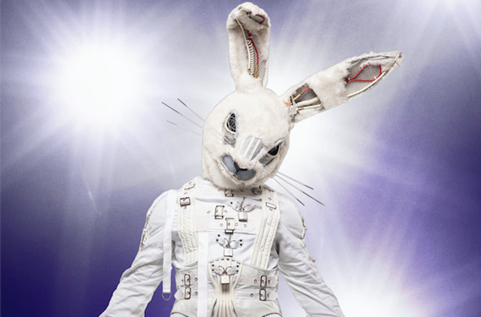 The Rabbit from The Masked Singer