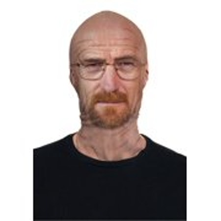 Treasure Gurus 'Breaking Bad' Fabric Mask