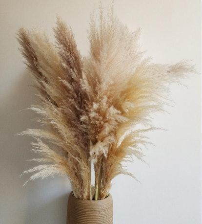 3 Pieces Dried Pampas-30'' -38 L