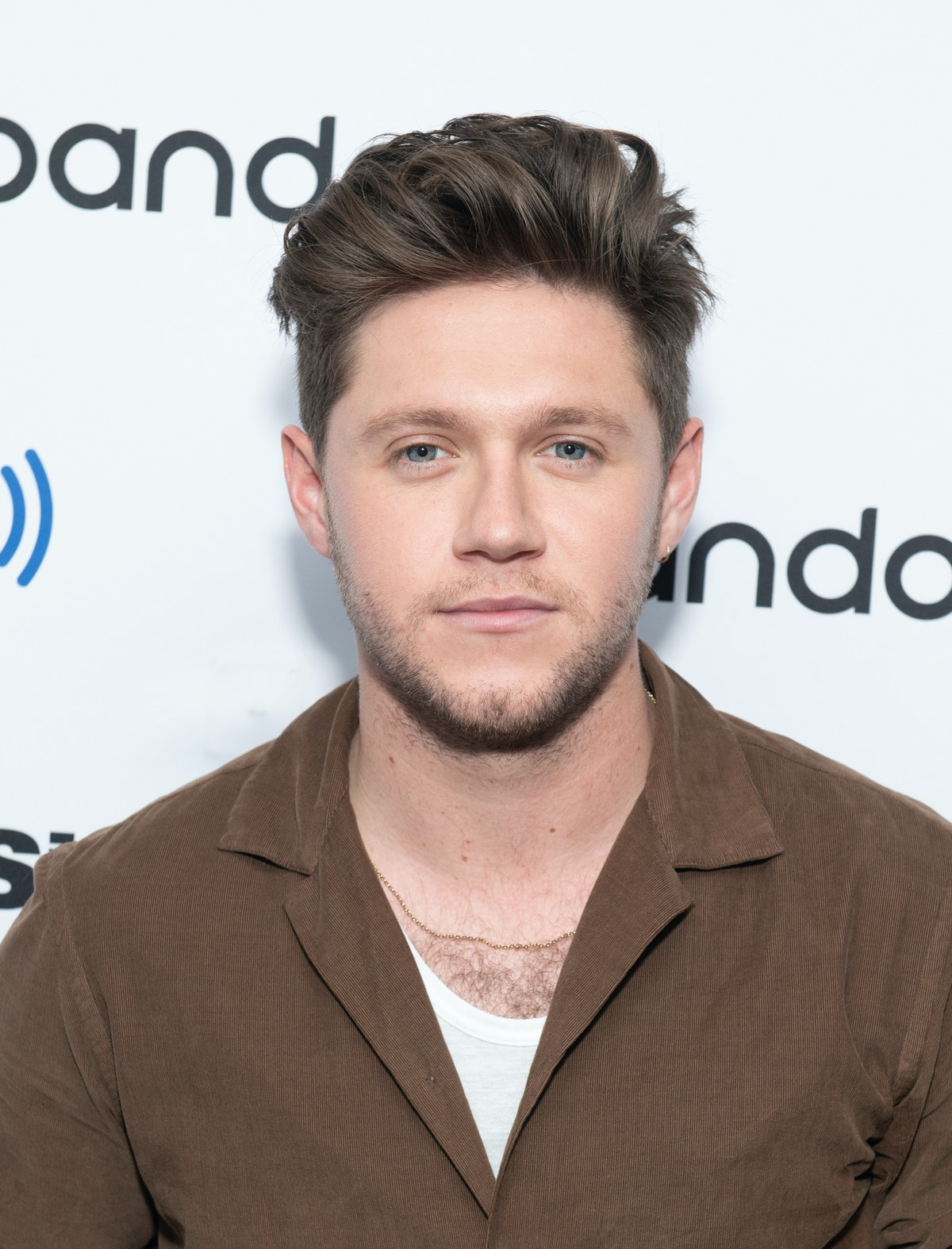 Niall Horan's Selfie With A Selena Gomez Poster Is Fueling Dating Rumors