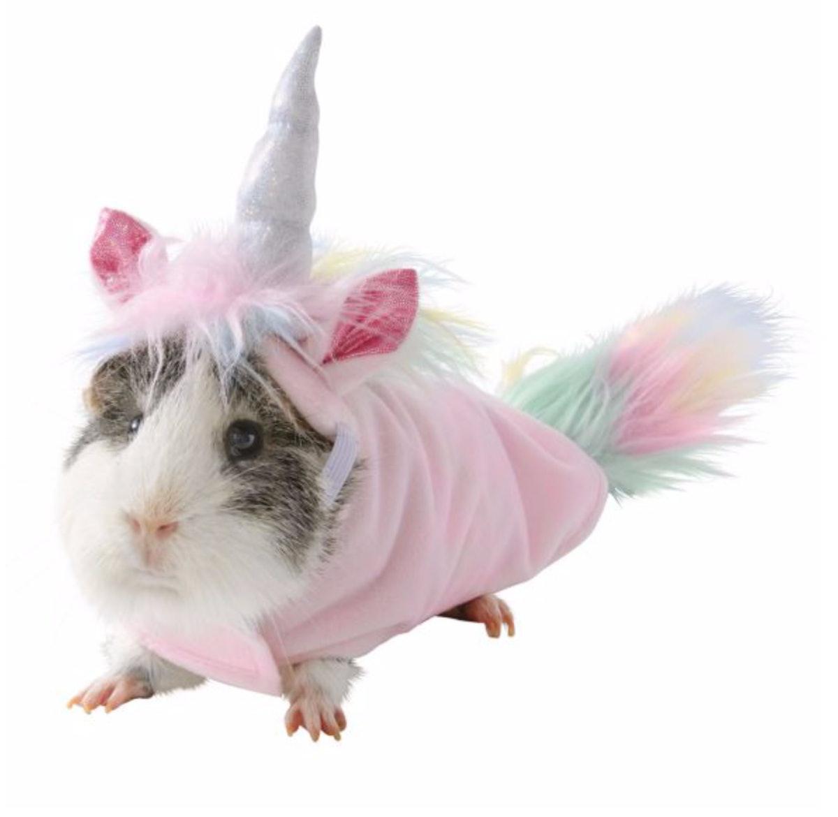 Thrills & Chills™ Unicorn Small Pet Costume