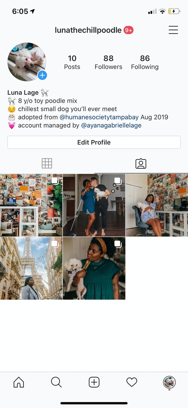 Your own profile even shows which Instagram photos you were tagged in, and you have the option of hiding them.