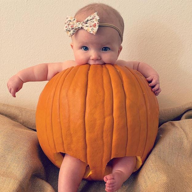 Pics Of Babies Dressed Like Pumpkins, baby in a pumpkin
