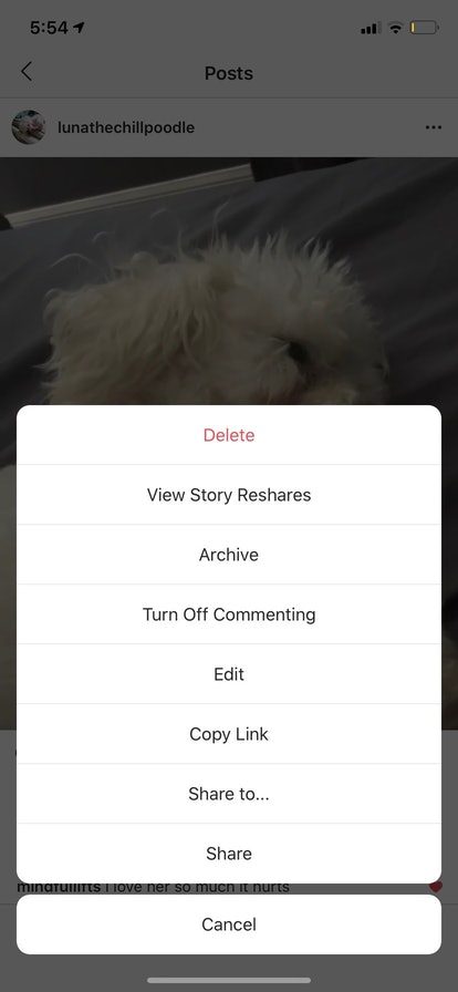 Even if you weren't tagged in someone's Instagram Story, you can see if they shared one of your posts to it.