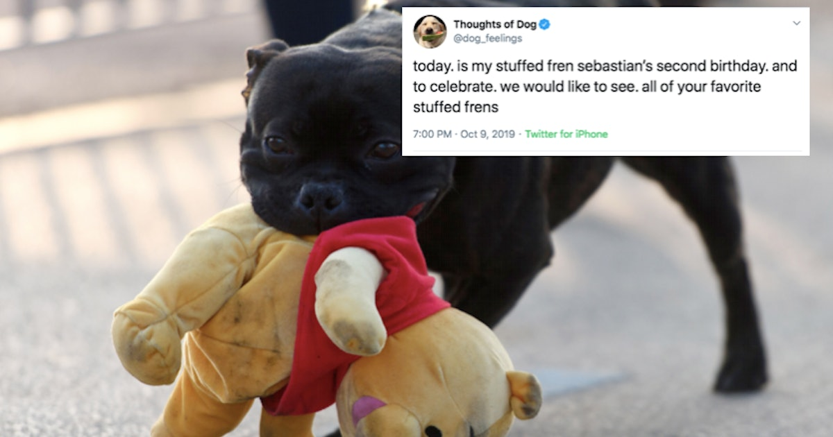 These Photos Of Dogs Playing With Their Favorite Toys Will Make Your Day