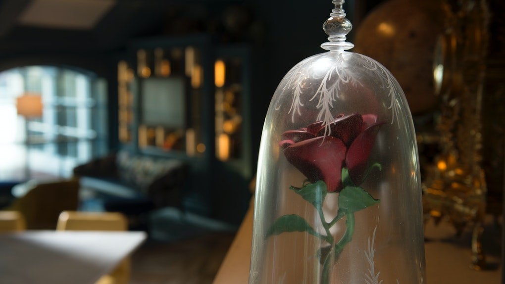A rose that looks like the one from 'Beauty and the Beast' at Disney's Enchanted Rose lounge makes for a stunning picture.
